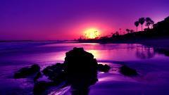 Beach Sunset Wallpaper 28808