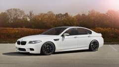 Beautiful BMW m5 Wallpaper 43992