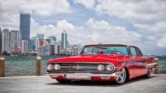 Beautiful Impala Wallpaper 42514