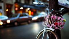 Bicycle Basket Flowers Street Wallpaper 44578