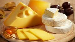 Cheese Wallpaper 42952