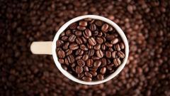Coffee Cup HD 38734
