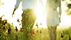 Cute Sunlight Wallpaper 36064