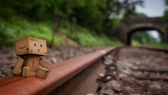 Danbo Pictures 24537