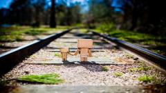 Danbo Wallpaper 24539