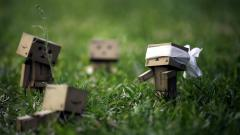 Danbo Wallpapers 24526