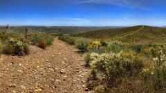 Dirt Road Wallpaper 43001
