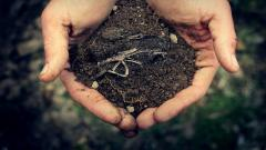 Dirt Wallpaper 43008