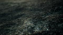 Dust Wallpaper 43016