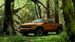 Ford Raptor 35286