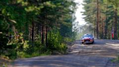 Forest Road Wallpaper 36151