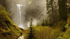 Free Oregon Wallpaper 21357
