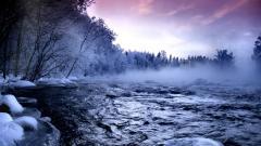 Frozen Forest HD 34221
