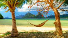 Hammock Wallpaper 43363