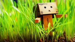 HD Danbo Wallpaper 24524