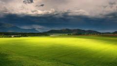 Horizon Landscape 28836