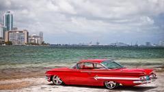Impala Wallpaper 42513