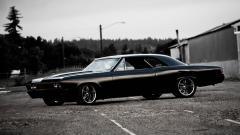 Impala Wallpapers 42516