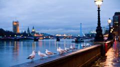 London 30219
