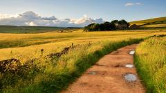 Lovely Dirt Road Wallpaper 43002