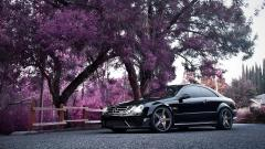 Mercedes Wallpaper 23521