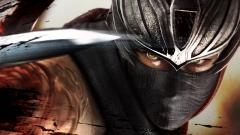 Ninja Gaiden Wallpaper 35082