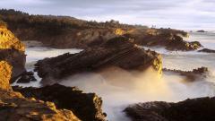 Oregon Pictures 21362