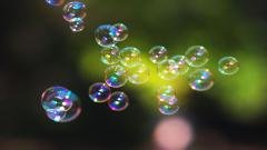 Pretty Bubbles Wallpaper 42542