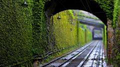 Pretty Railroad Wallpaper 38713