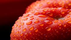 Red Apple HD 34690
