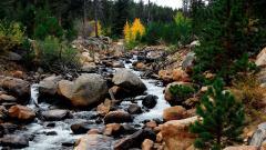 Rocky Mountain 27887