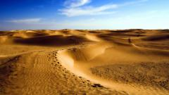 Sand Dunes 30744