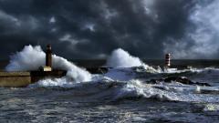 Sea Storm 32297