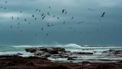 Sea Storm Wallpaper 32291