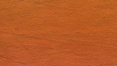 Skin Wallpaper 38465