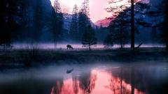 Stunning Pond Wallpaper 29688