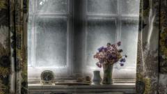 Windowsill Wallpapers 38630