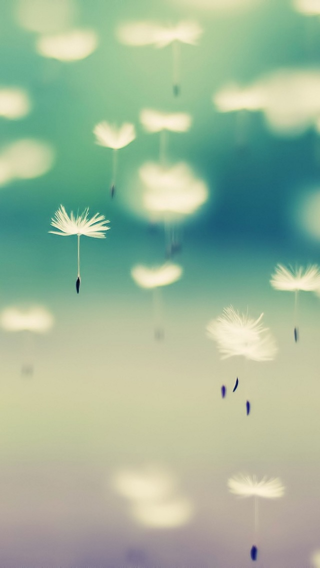 pretty iphone wallpaper 45896
