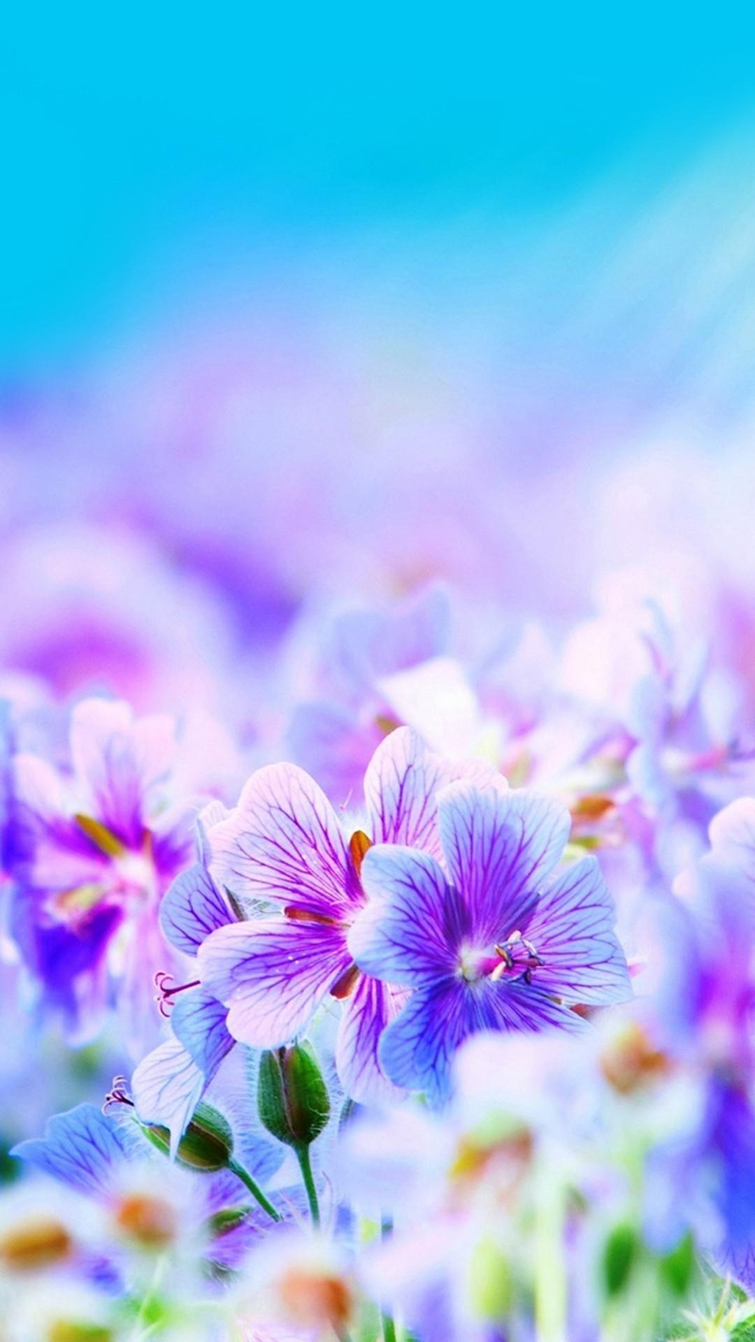 mobile screensaver wallpaper flowers - photo #16
