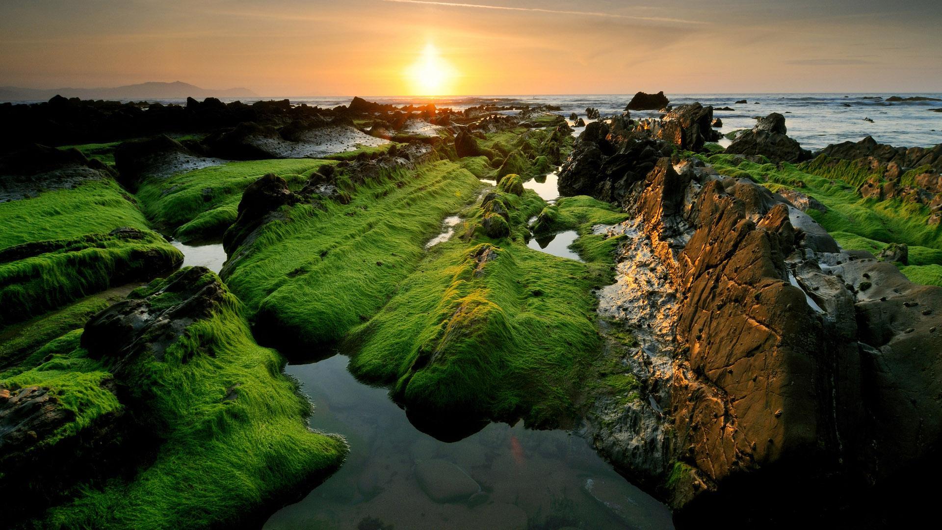 stunning shore wallpaper 46325