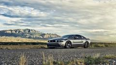 Beautiful Mustang Wallpaper 46572