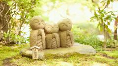 Happy Buddha Wallpaper 45876