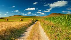 Path Wallpaper 45892