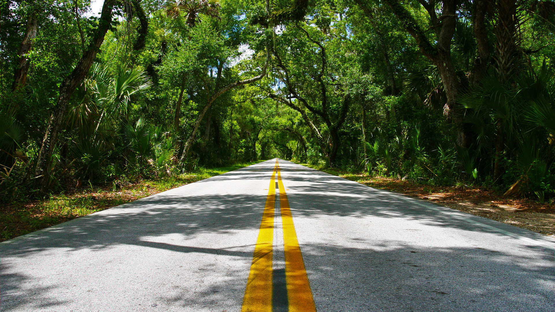 awesome road wallpaper 45501