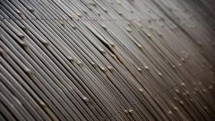Bamboo Texture Wallpaper 45454