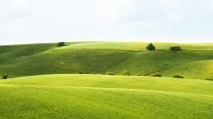 Hillside Wallpaper HD 45823