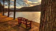 Lakeside Bench Wallpaper 46941