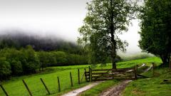 Ranch Wallpaper 45395