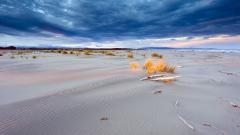Sand Dunes Wallpaper 48602