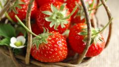 Strawberries Close Up Wallpaper 45281